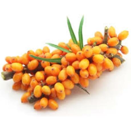 Savanyú és gyümölcsös,élénkítő hatású illataroma.